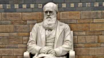 Deux Livres De Charles Darwin Disparaissent De La Bibliothèque De