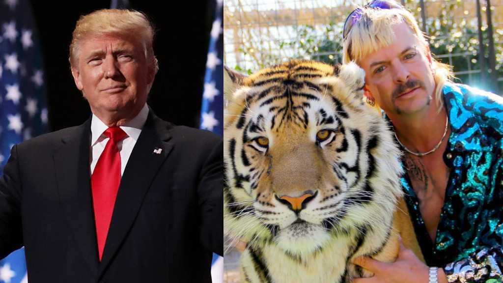 Donald Trump Devrait Se Pardonner Ainsi Que Joe Exotic, Affirme