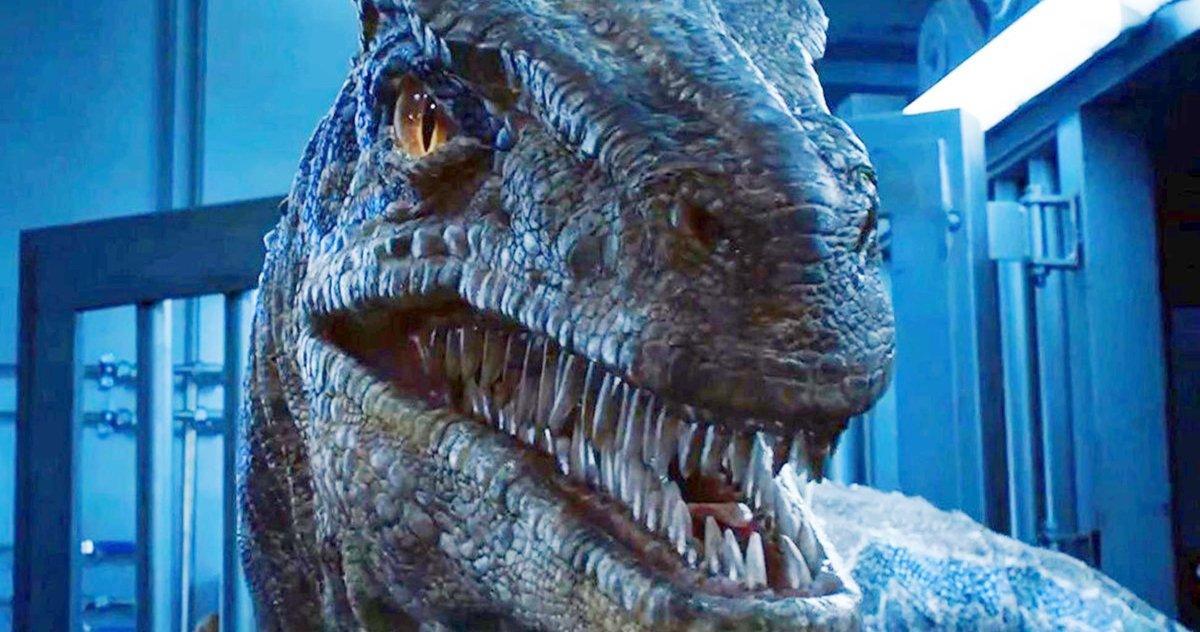 Jurassic World 3: Dominion Termine Le Tournage, Le Réalisateur Partage