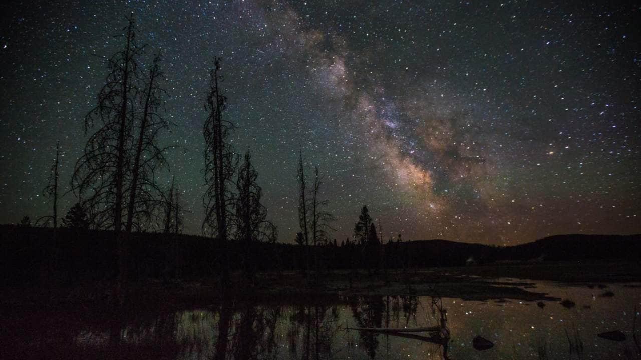 L'arbre Généalogique De La Voie Lactée Montre Que Sa Plus