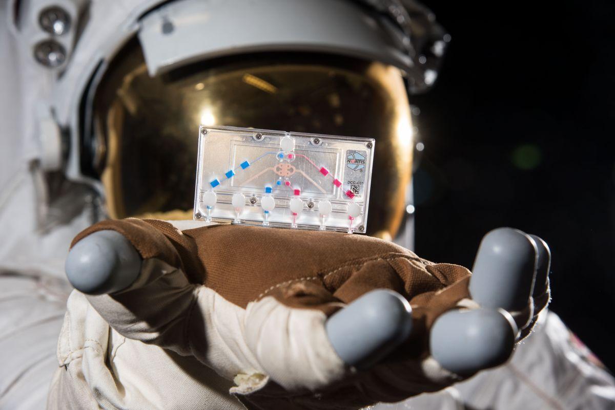 Le Lancement De Crew 1 De Spacex Pour La Nasa Transporte