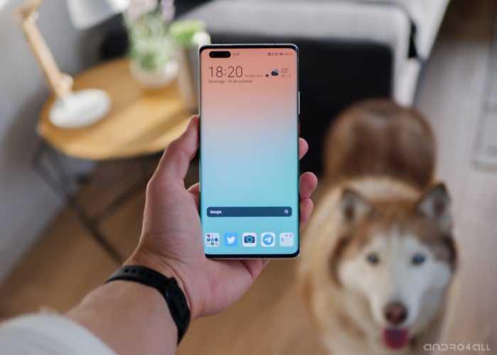 Huawei Mate 40 Pro, écran avec double trou