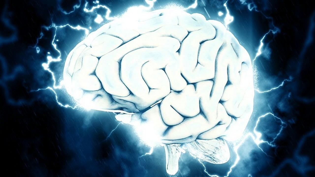 Le réseau de neurones dans le cerveau humain est similaire au réseau de galaxies de l'univers