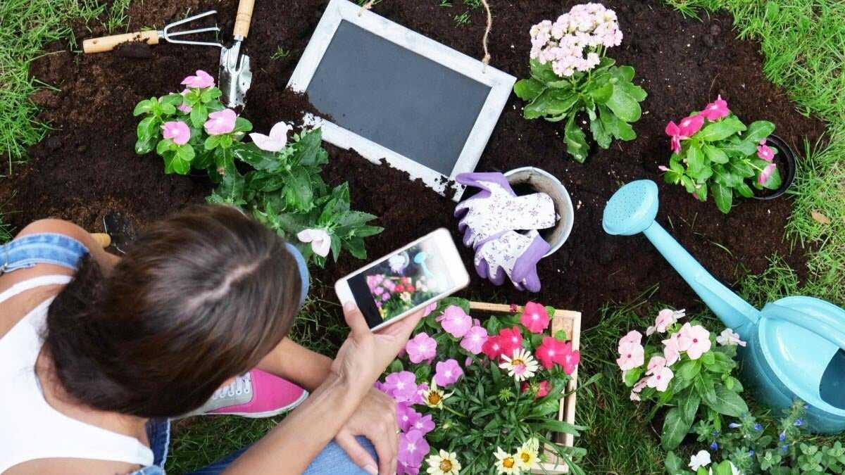 applications de jardinage