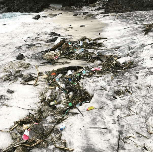 Pollution Plastique Aux États Unis: Informations Connexes Et Soins