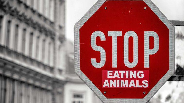 Tout Le Monde N'a Pas Besoin De Devenir Végétalien Pour