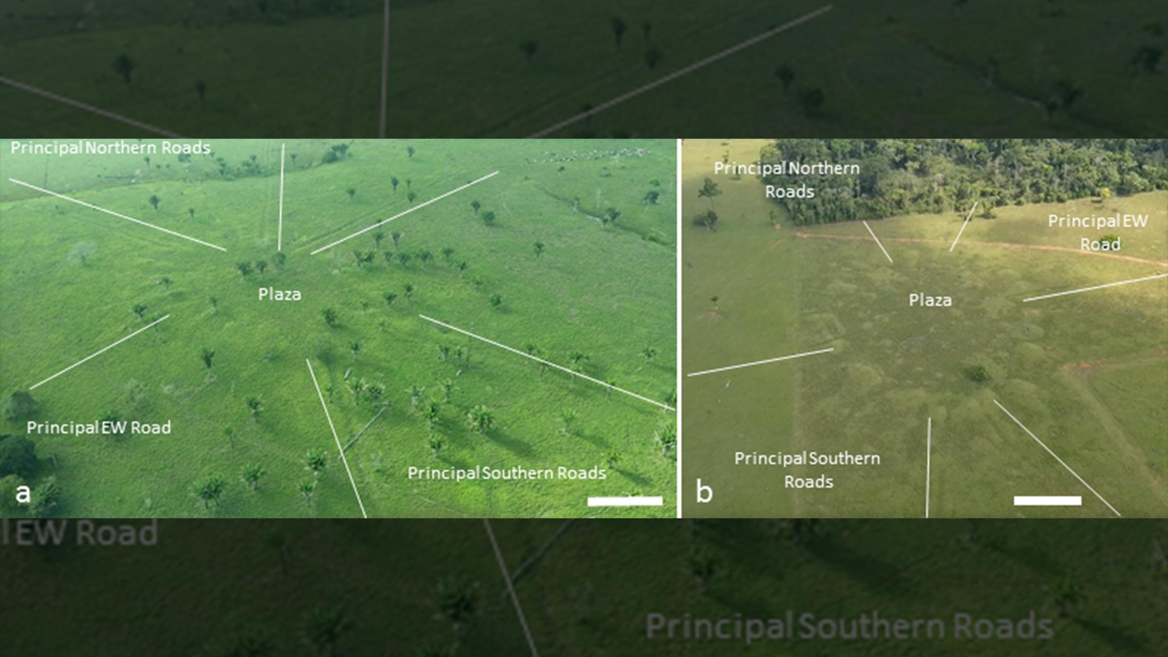 Les archéologues trouvent un vaste réseau de villages amazoniens disposés comme le cosmos (vidéo) By Jack35 1607517366_210_Les-archeologues-trouvent-un-vaste-reseau-de-villages-amazoniens-disposes