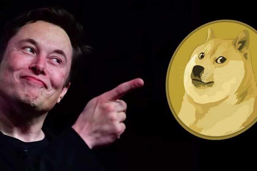 Quand Elon Musk prend la parole, le pain Dogecoin monte: un seul tweet a provoqué une hausse de 30%