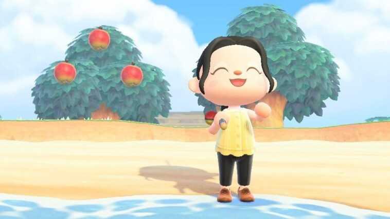 Les plans de Nintendo pour Animal Crossing: New Horizons en 2021
