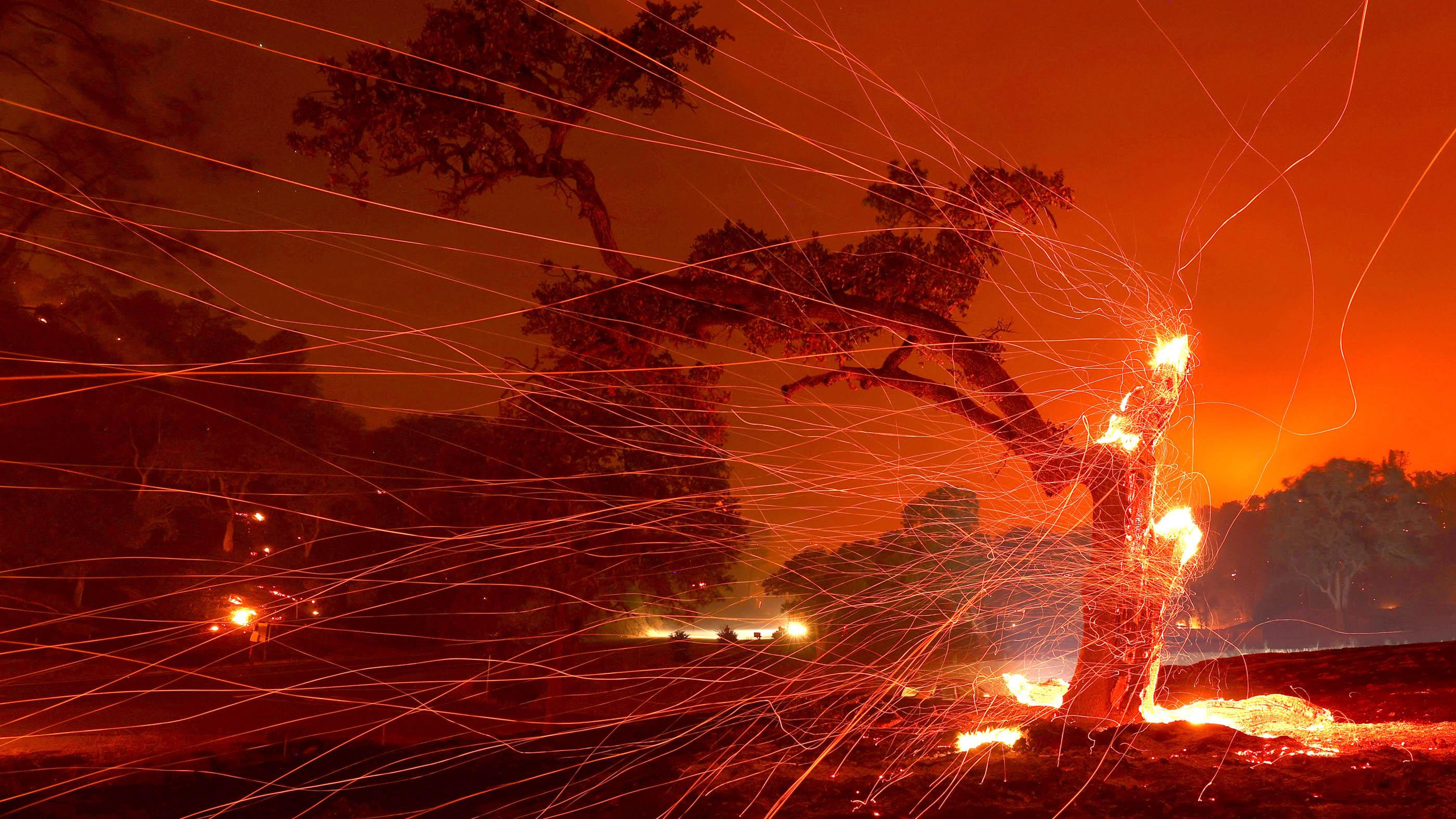 Les braises soufflent un arbre brûlé après l'incendie du complexe Lightning LNU qui a brûlé dans la région le 18 août 2020 à Napa, en Californie.