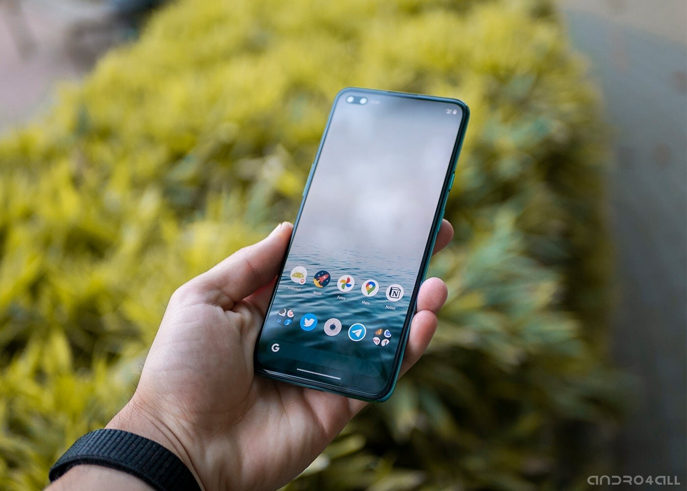 OnePlus Nord, écran