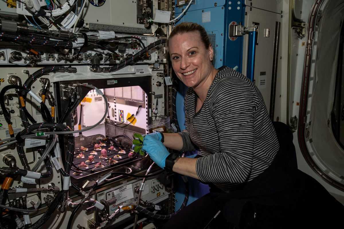 L'astronaute De La Nasa Kate Rubins Récolte Des Radis Cultivés