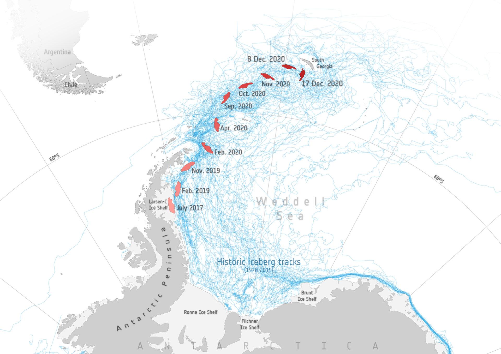 Une carte montre comment l'A-68a s'est déplacée depuis la fissuration de Larsen C. Les lignes bleues montrent les traces historiques d'autres icebergs.