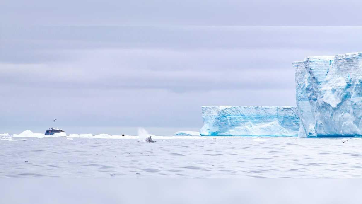 Le Plus Grand Iceberg Du Monde Continue De Se Briser