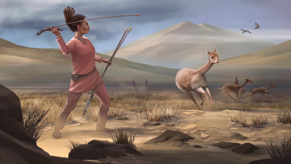 Reconstruction artistique d'une chasse à la vigogne dans la Wilamaya Patjxa.