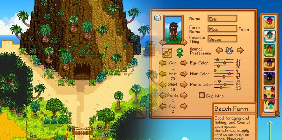 Stardew Valley - Île Ginger