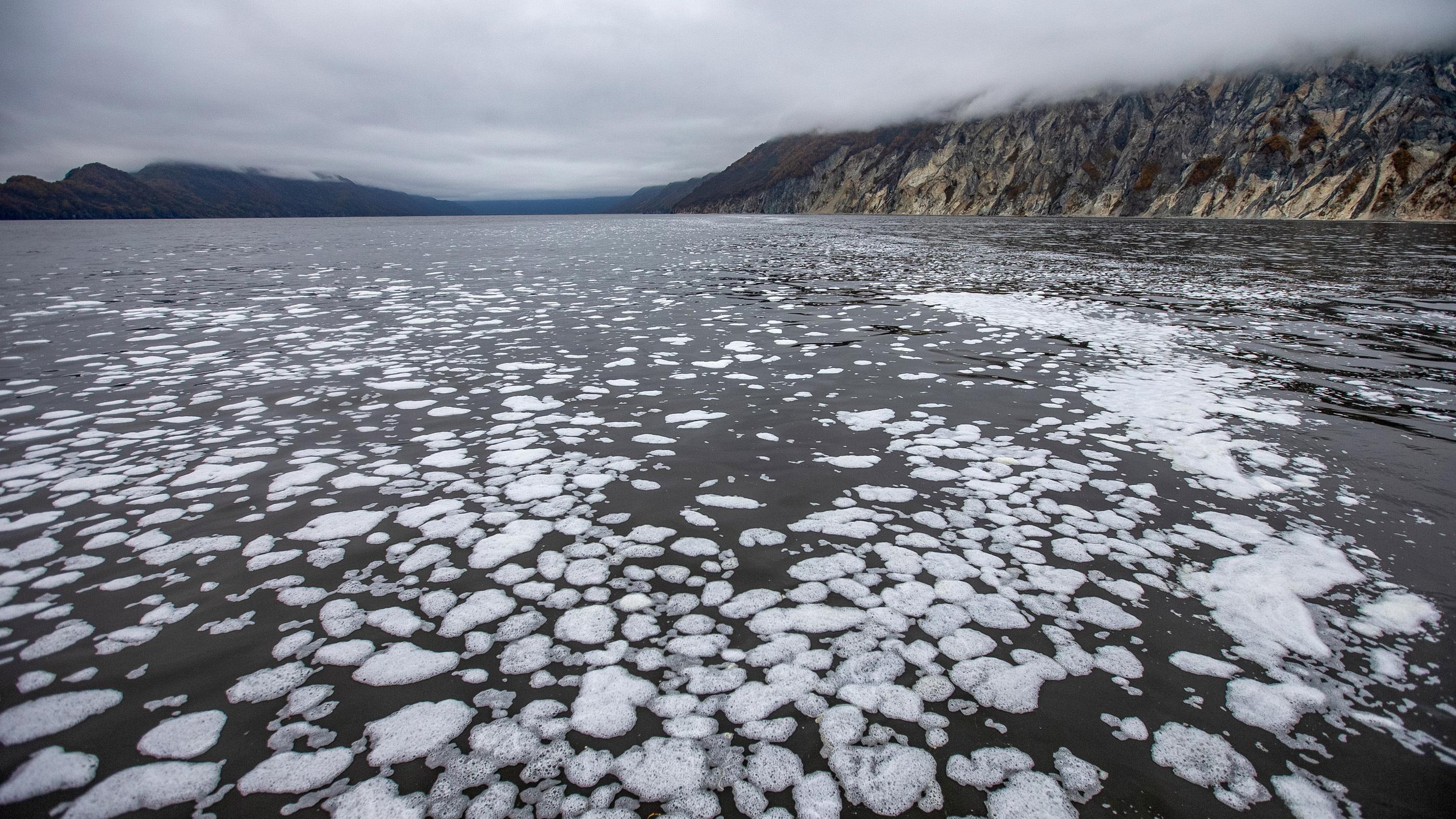 Les chercheurs rapportent que jusqu'à 95% des créatures sur le fond marin de la baie d'Avacha dans la péninsule du Kamtchatka pourraient avoir été tuées par la pollution.  Avacha Bay est présenté ici le 5 octobre.