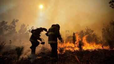 2021 Devrait être L'année Où L'humanité Arrête La Guerre Contre