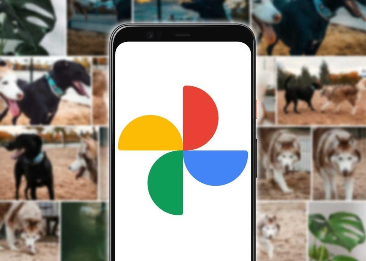 Télécharger des images et des vidéos de Google Photos