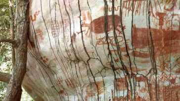 L'art Rupestre Prouve Que Les Premiers Habitants De La Forêt