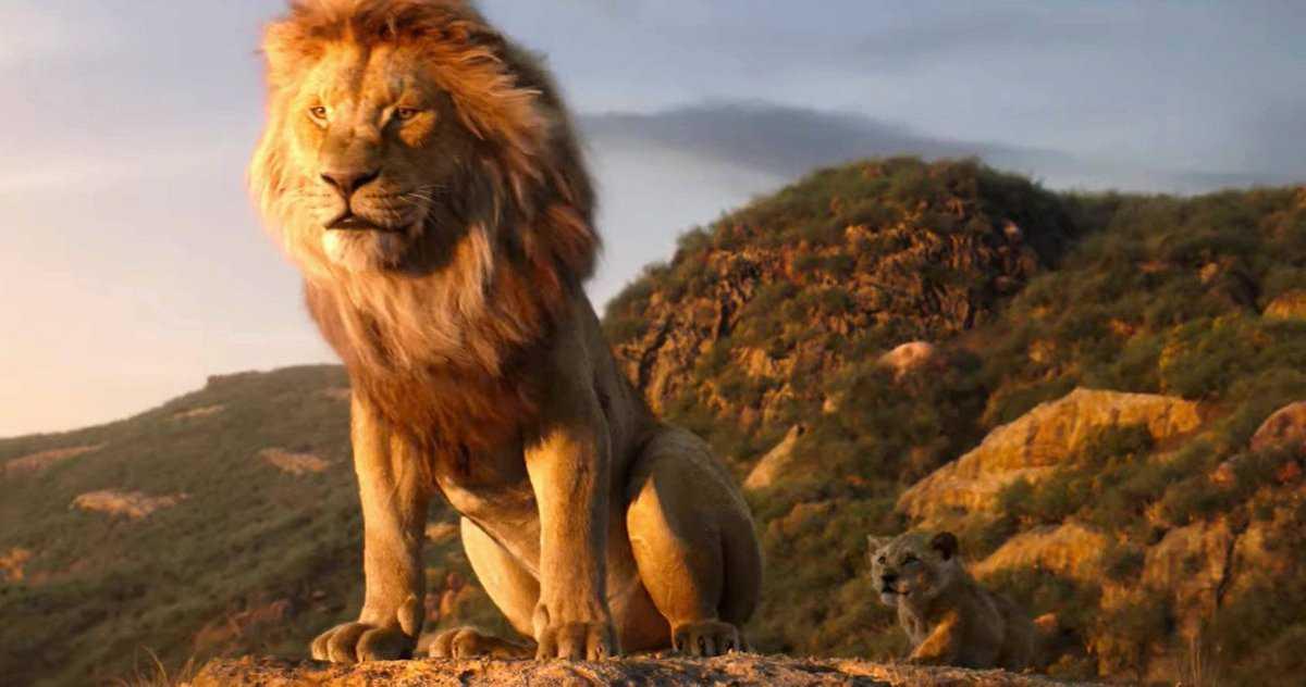 Le Scénario Du Roi Lion 2 Reçoit Les éloges Du