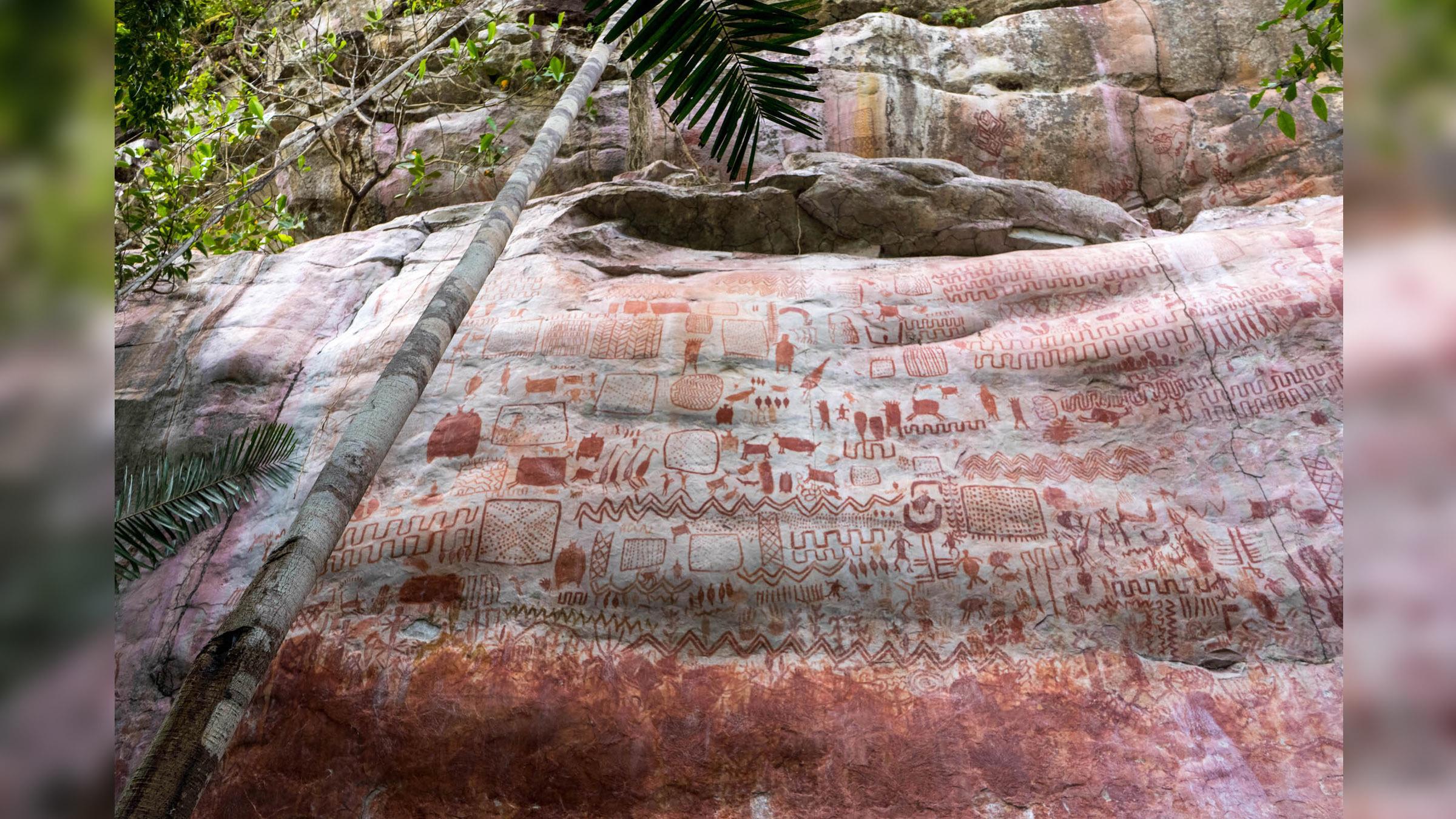 Des milliers d'images dessinées au cours de la dernière période glaciaire ont été trouvées dans la forêt amazonienne.
