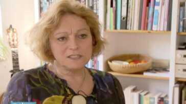 Les Pays Bas S'excusent D'avoir Forcé Les Personnes Trans à Se