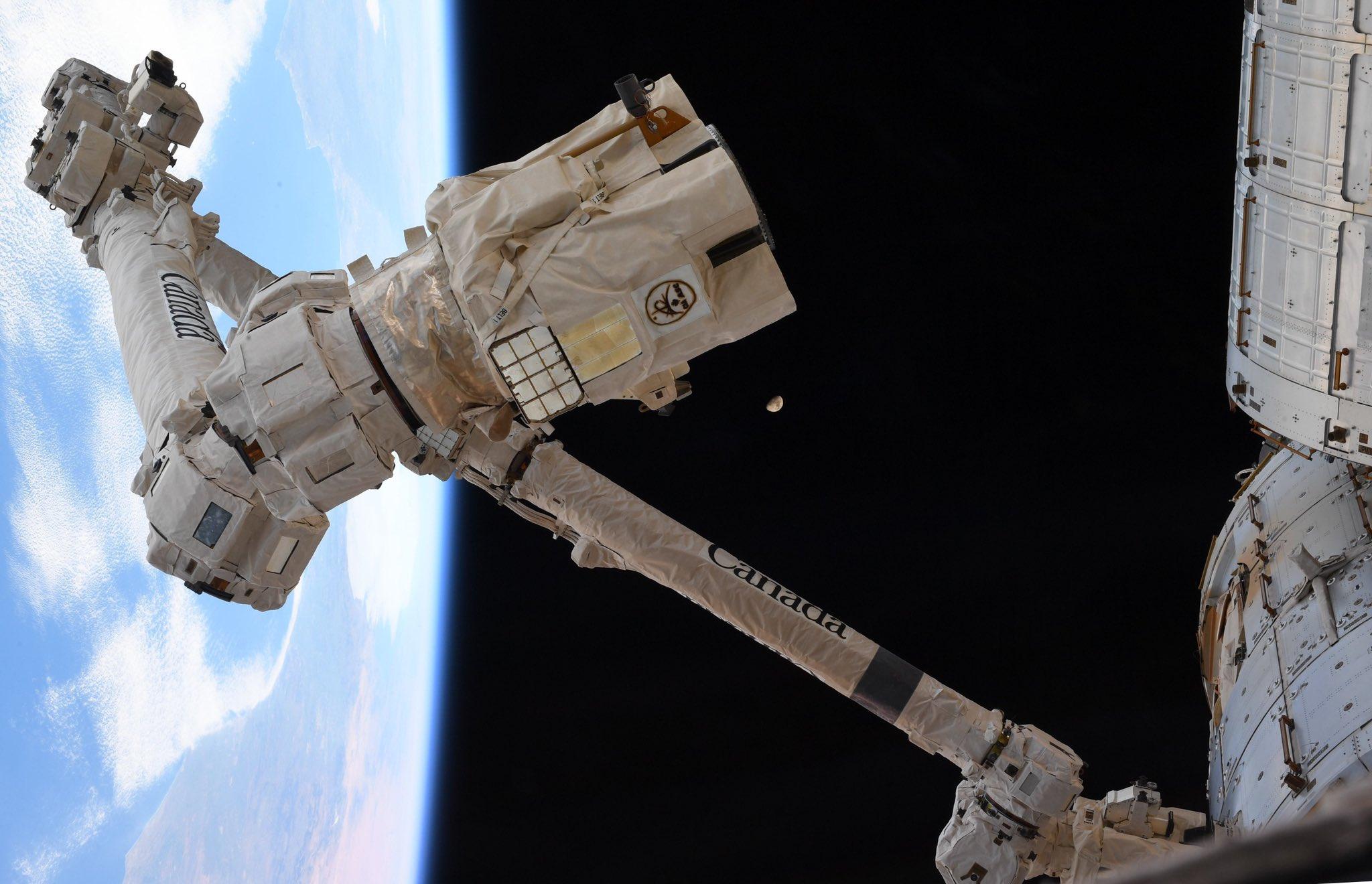 """Le dernier quart de lune se profile derrière le bras robotique Canadarm2 de la Station spatiale internationale sur cette photo de l'astronaute de la NASA Jessica Meir.  Elle et son coéquipier de l'Expédition 62, Andrew Morgan, ont utilisé le Canadarm2 pour attraper un vaisseau cargo Cygnus qui arrivait mardi (18 février). """"Le puissant @csa_asc # Canadarm2 prêt à attaquer, alors que @AstroDrewMorgan et moi avons pratiqué nos manœuvres pour capturer le #Cygnus qui se dirige vers nous, chargé de près de 7500 livres de science, de fret et de fournitures @Space_Station,"""" Meir a tweeté samedi 15 février. """"Même la Lune a fait son apparition, attendant avec impatience #ARTEMIS,"""" a-t-elle ajouté, faisant référence au programme Artemis de la NASA, qui vise à faire atterrir des astronautes sur la lune en 2024."""