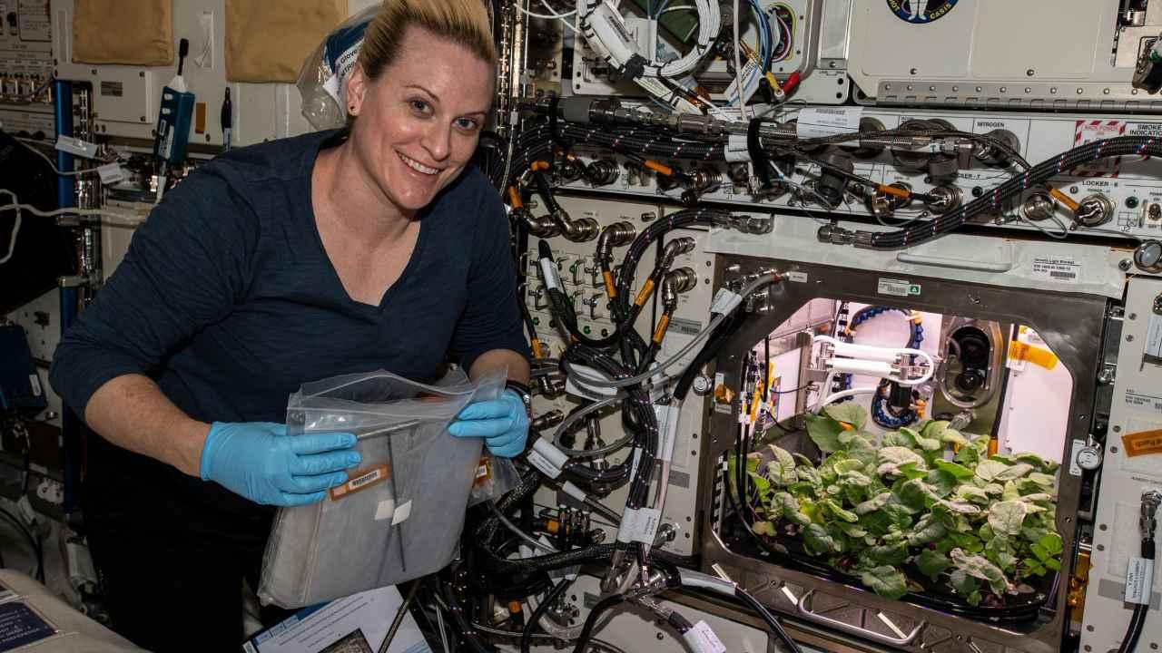 Les Astronautes De La Nasa Récoltent Pour La Première Fois