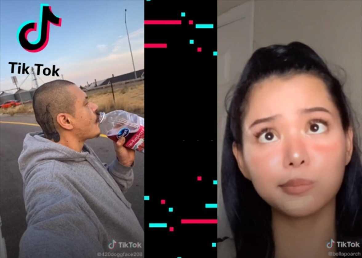 Les vidéos TikTok les plus vues de 2020 sont virales