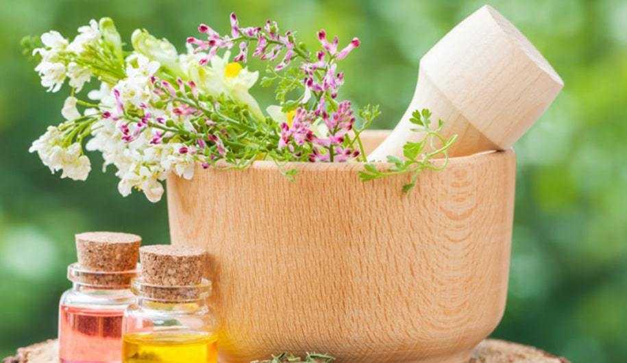 Perdez Vos Peurs Avec L'utilisation Des Fleurs D'aspen