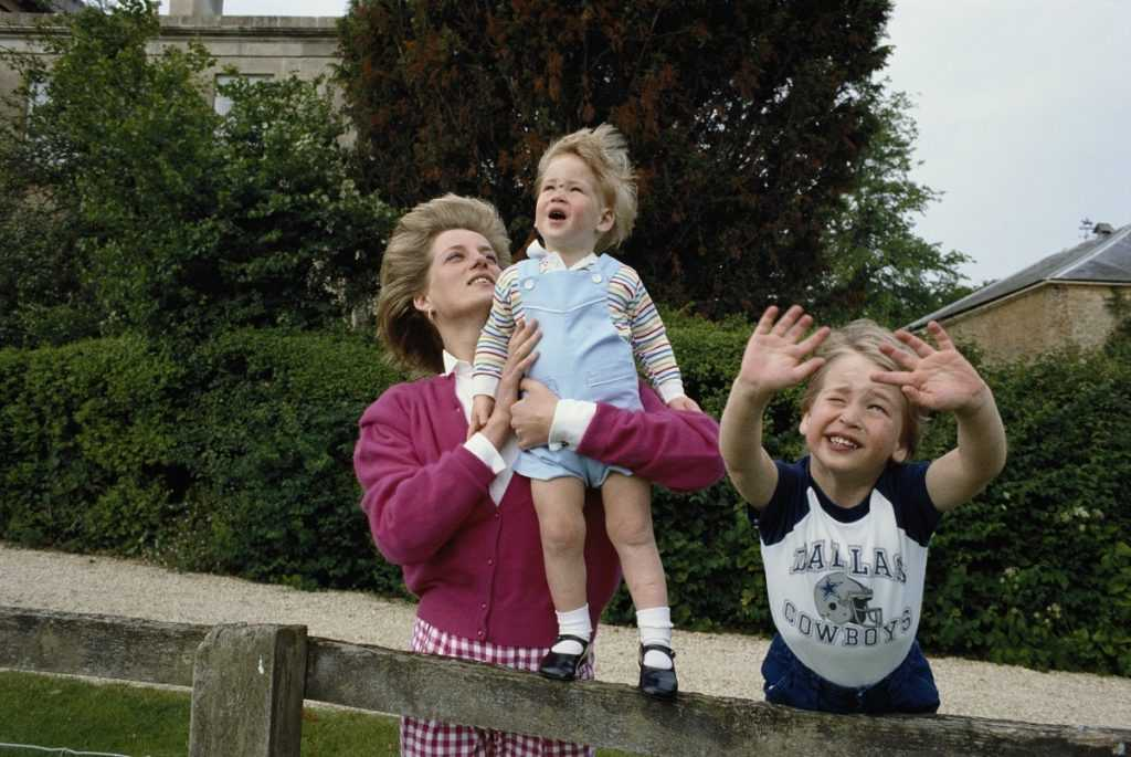 Princes William and Harry with their mother, Princess Diana