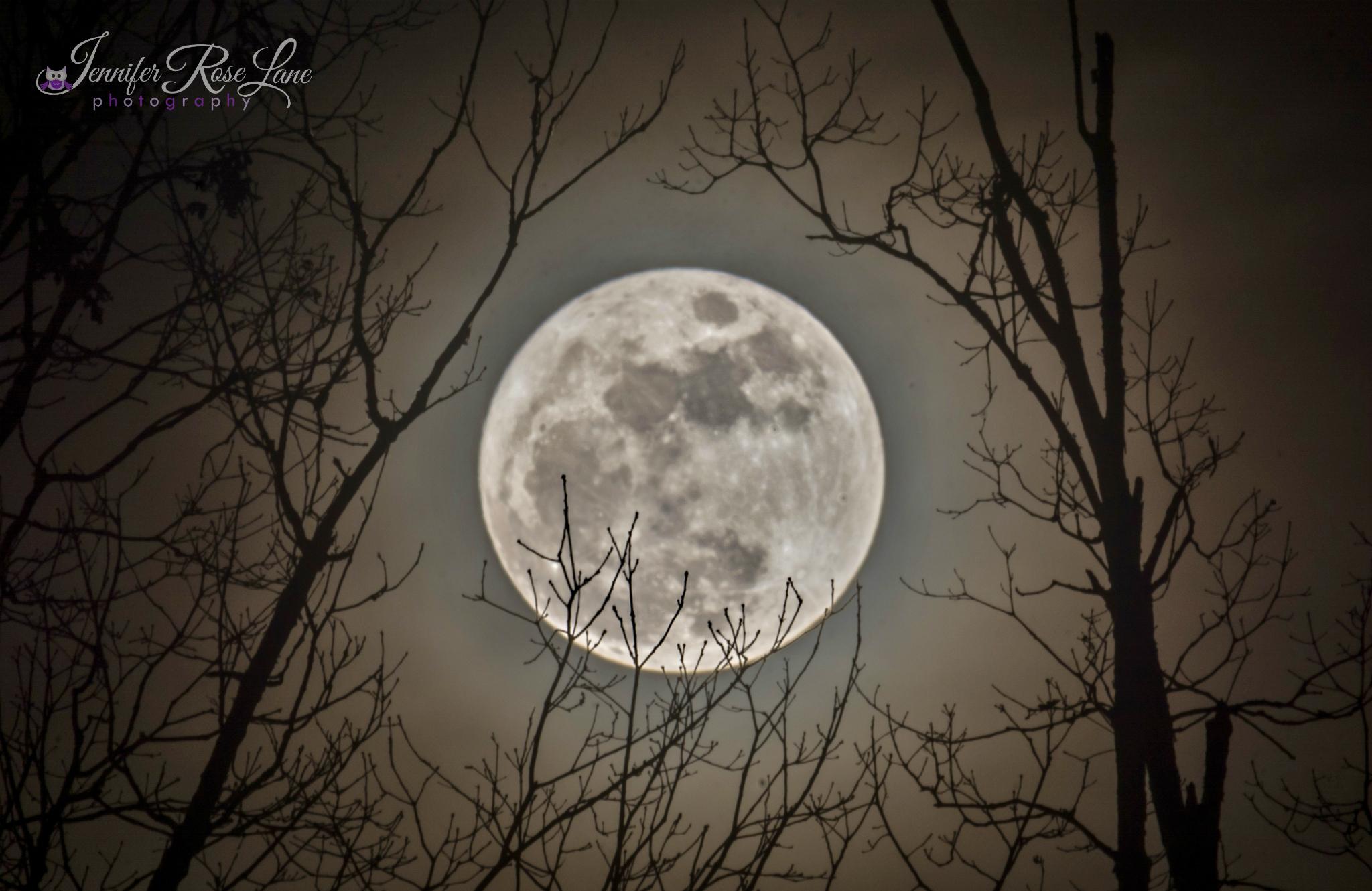 La photographe Jennifer Rose Lane a capturé cette photo de la super lune se levant au-dessus de Chapmanville, en Virginie-Occidentale, le 13 décembre 2016.