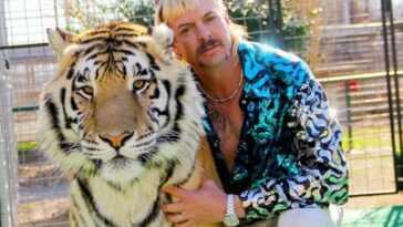 """'Tiger King': Joe Exotic serait """"très proche"""" de la grâce présidentielle pour Donald Trump"""