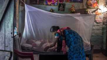 Un Long Chemin à Parcourir Pour Lutter Contre Le Paludisme