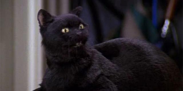 Le Salem de la série originale était l'un des personnages préférés de la série (Photo: Nickelodeon)