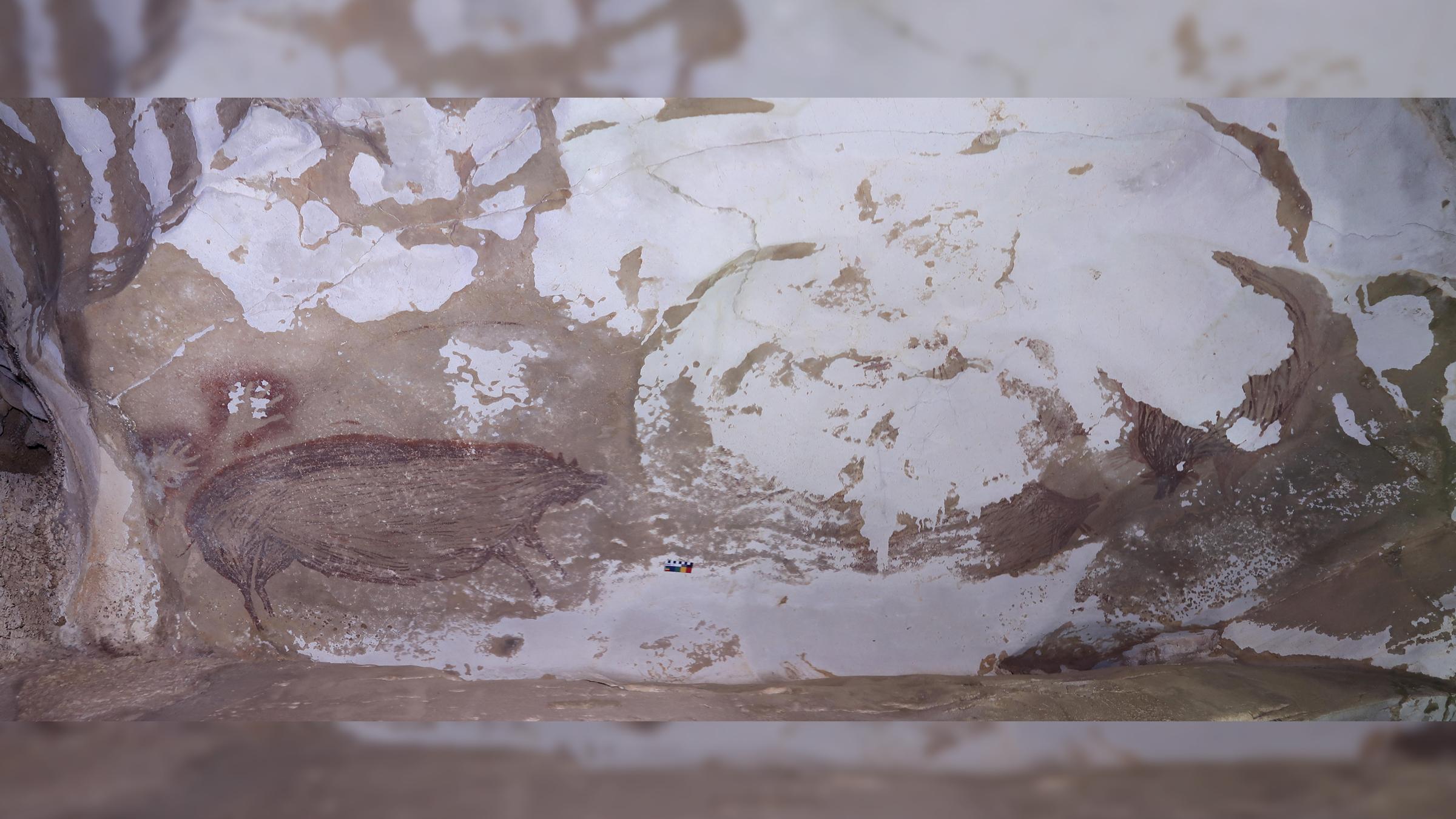 Le panneau d'art rupestre étudié à la grotte Leang Tedongnge.