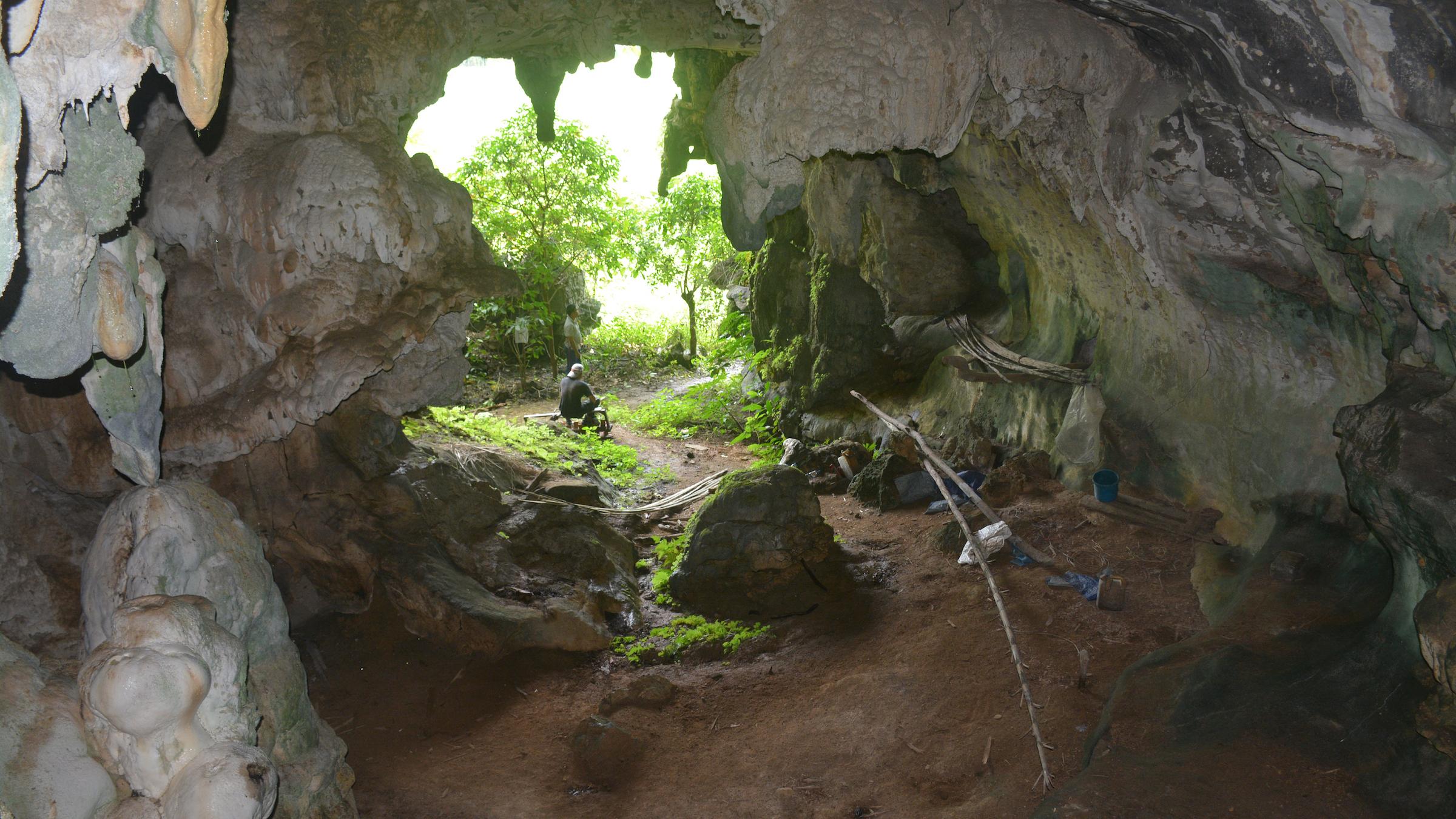 L'embouchure de la grotte de Leang Tedongnge.