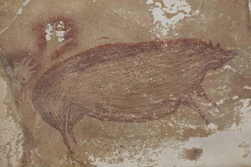 Cette peinture rupestre d'un animal est la plus ancienne connue à ce jour: elle a été trouvée dans une grotte en Indonésie