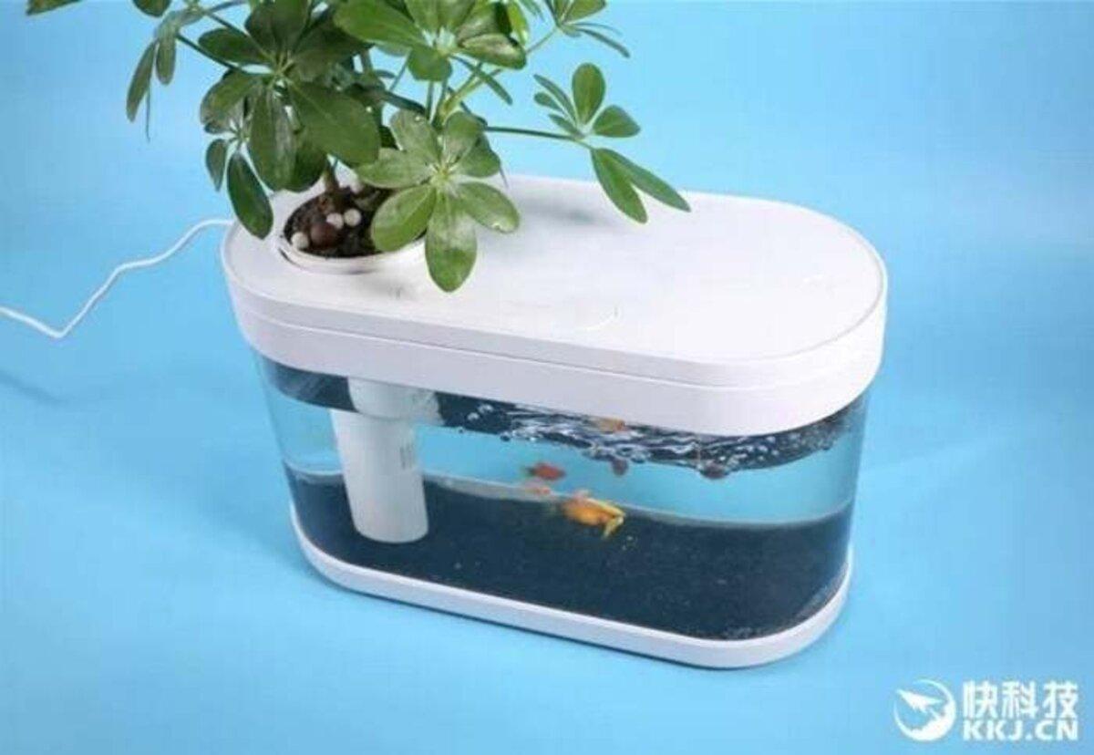 Aquarium Xiaomi