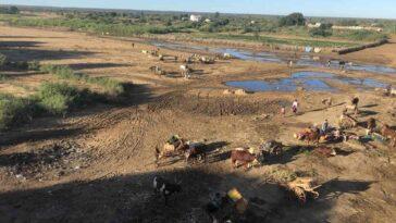 L'onu Demande 76 Millions De Dollars D'aide D'urgence à Madagascar,