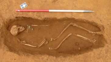 Un énorme Cimetière Anglo Saxon Et Un Trésor Mis Au Jour