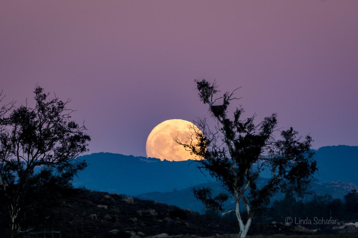 Impressionnante photo de la super lune. & Nbsp;