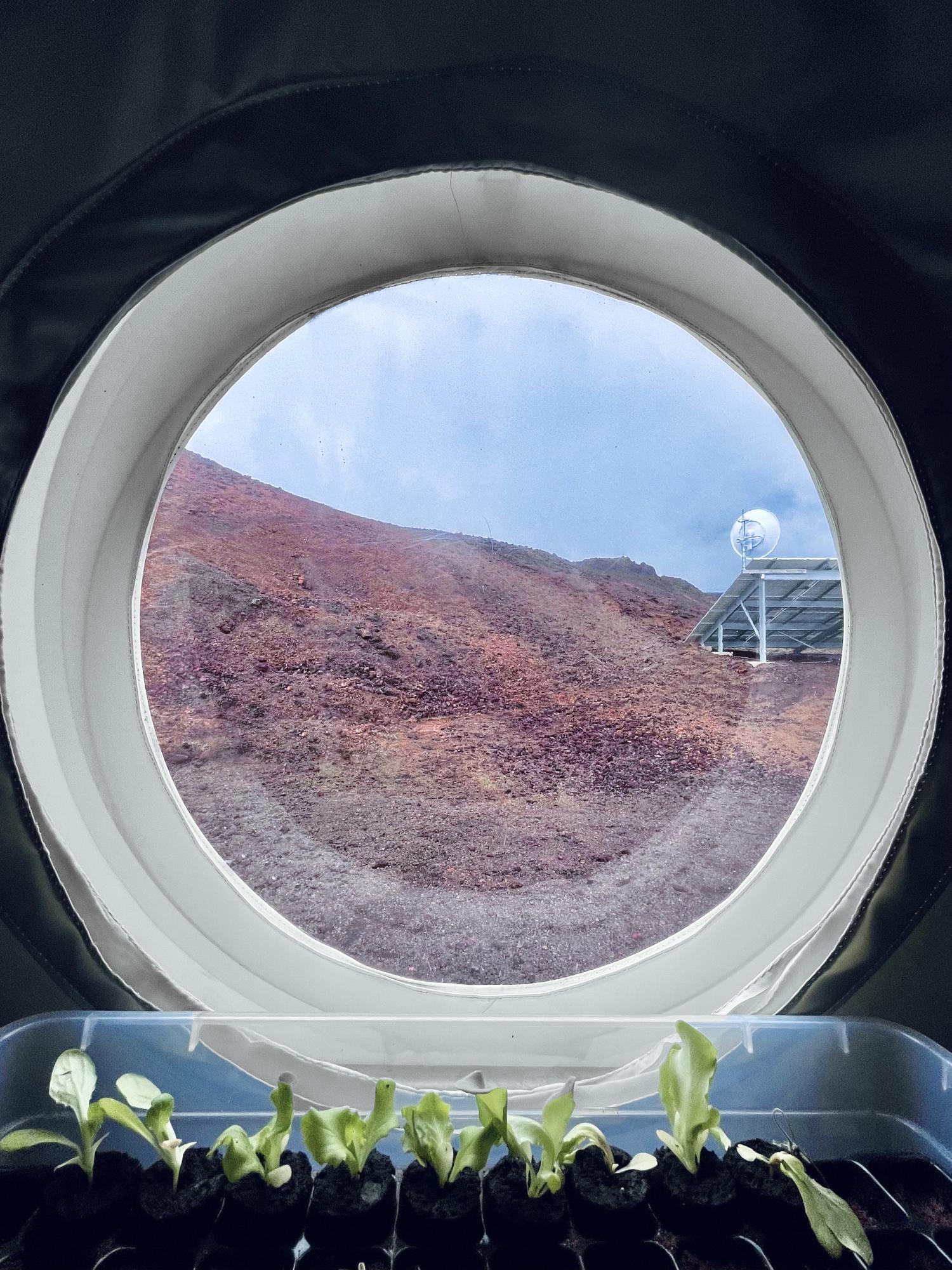 Les premières récoltes de Valoria 1 sur Mars.