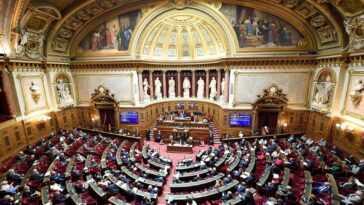 Le Sénat Français Approuve Un Projet De Report Des élections