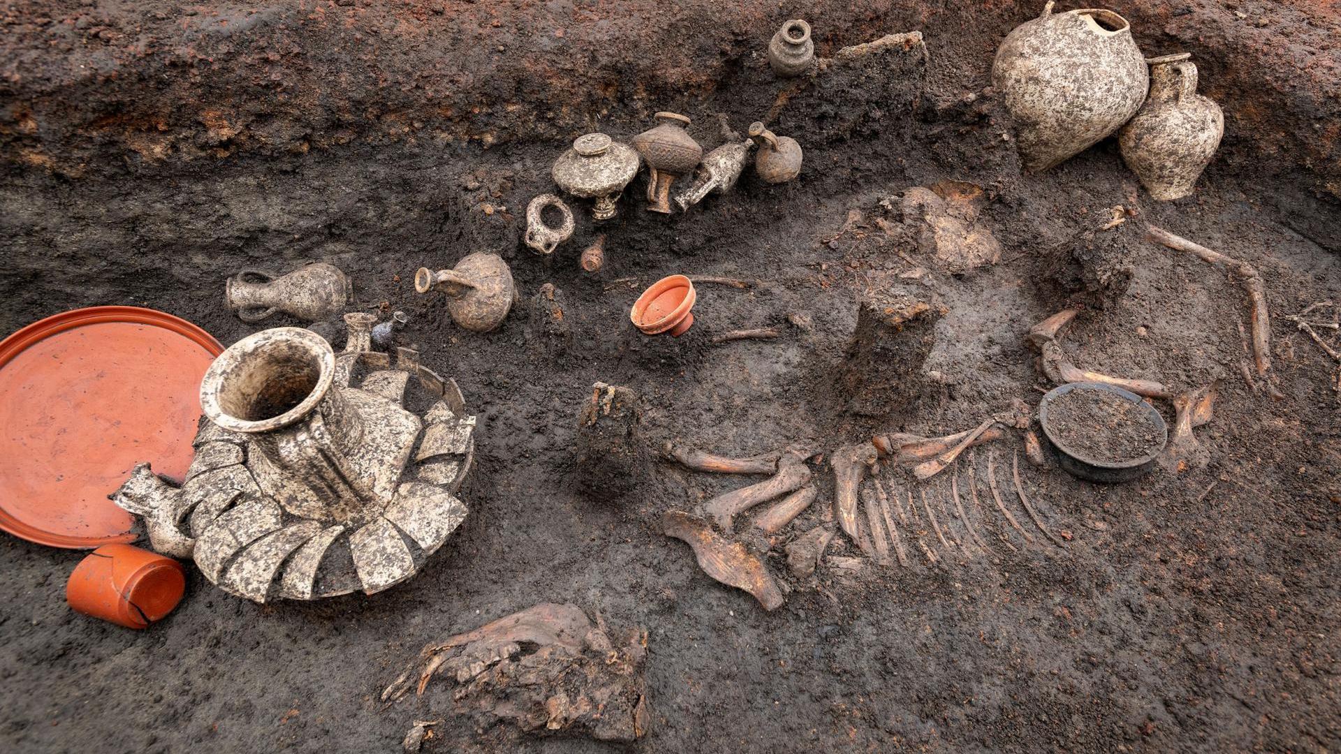 Les restes du chiot ont été trouvés à côté des récipients en terre cuite contenant de la nourriture et des boissons.