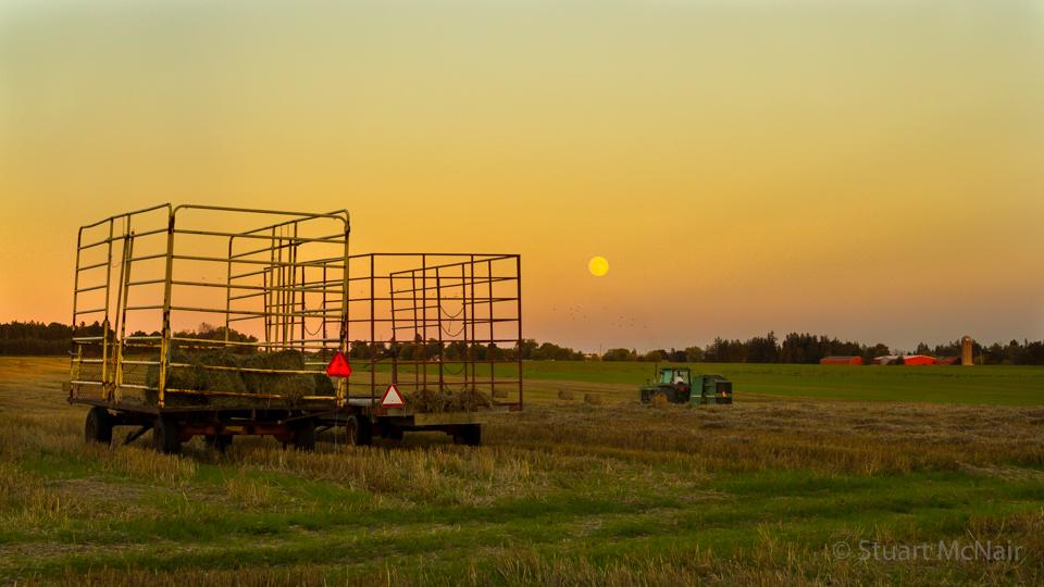 Sur cette photo de Stuart McNair, la lune des récoltes montante illumine les terres agricoles au coucher du soleil le 15 septembre 2016 au nord de Toronto, au Canada.