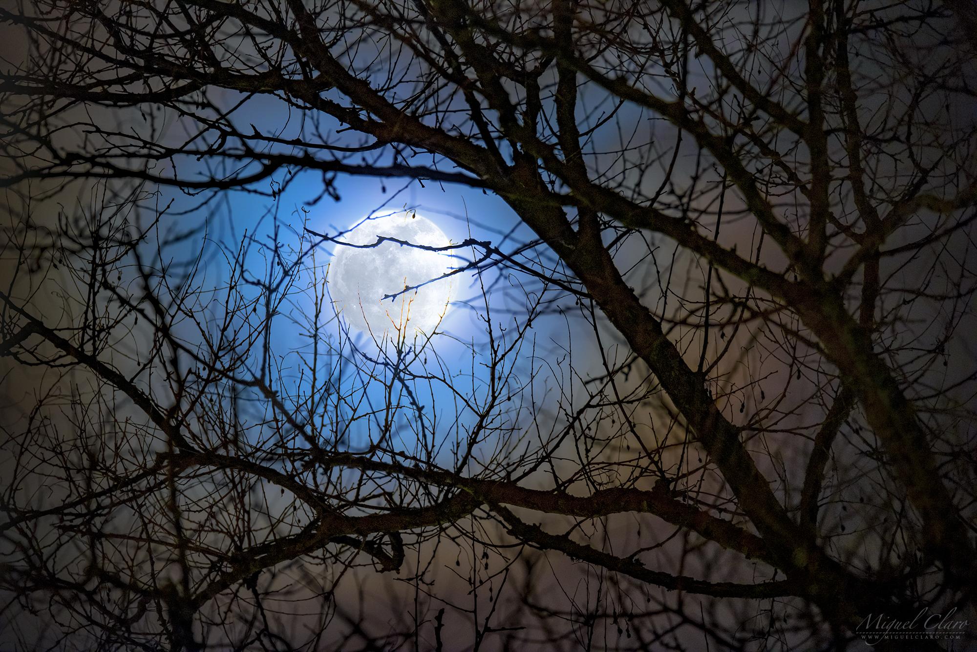 Une couronne lunaire encadre la pleine lune froide sur cette photo prise depuis la réserve portugaise de Dark Sky Alqueva le 21 décembre 2018.