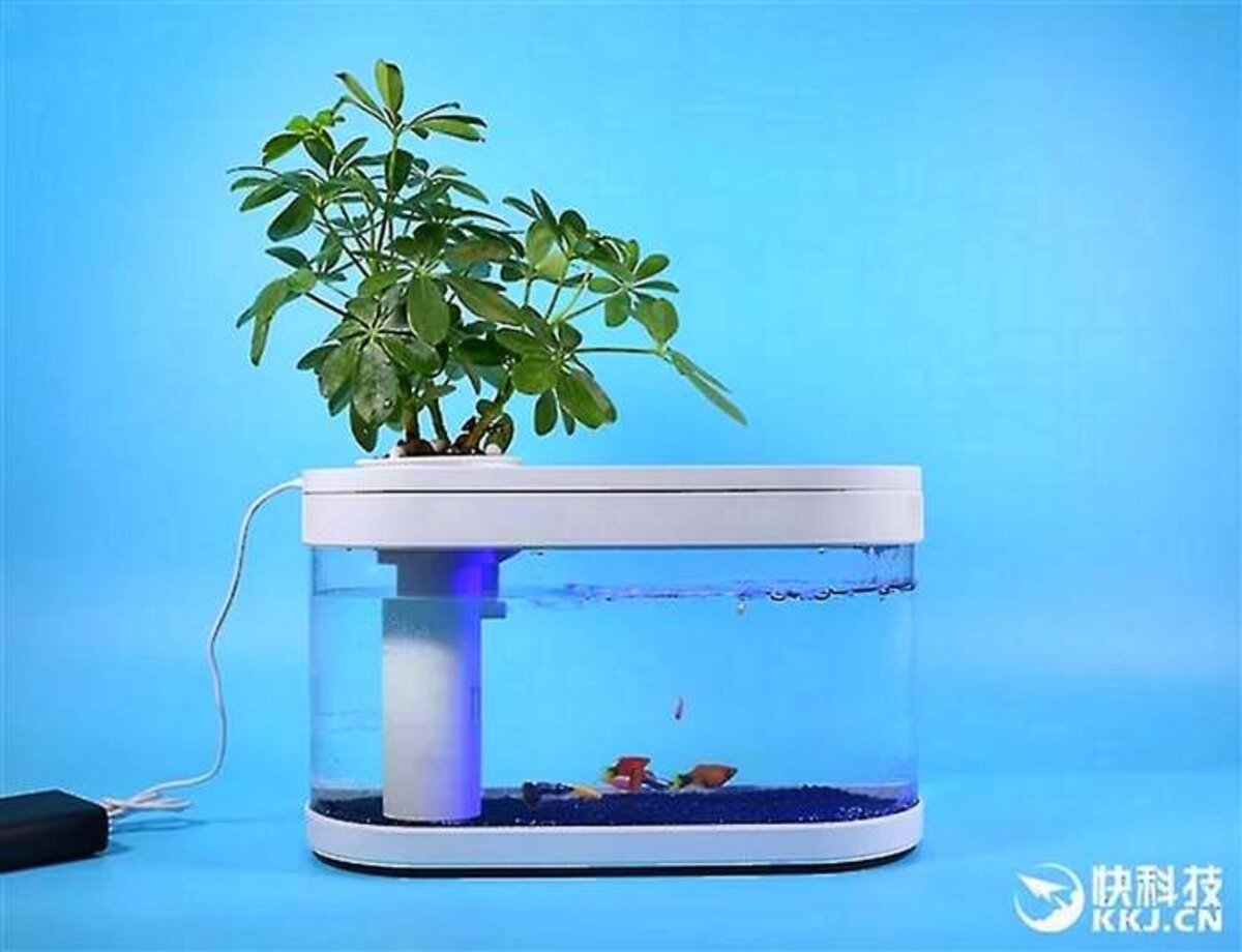 Aquarium intelligent Xiaomi