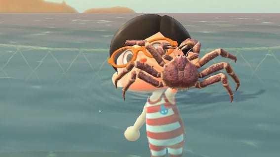 Animal Crossing En Janvier: Liste De Tous Les Nouveaux Poissons,
